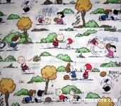 Peanuts Gang playing Football