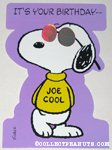 Joe Cool Birthday Greeting Card