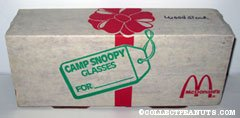 Camp Snoopy Glasses Gift Box