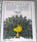 Peacock Woodstock Metlife Magazine Ad