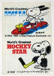 Snoopy World's Greatest Surfer and Hockey Star Glass Decal