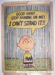 Peanuts Hang-Up #2 - Charlie Brown