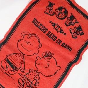 Linus & Sally Love is Felt Pennant