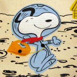 Peanuts Simon Simple Goodies - Peanuts Treasure Box