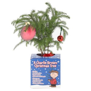 A Charlie Brown Christmas Gifts