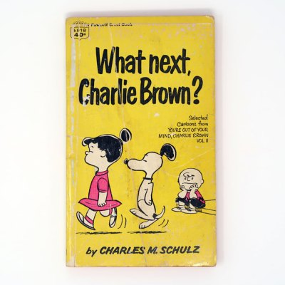 What Next, Charlie Brown? Book