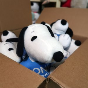 Box Full of Snoopy Cuddles
