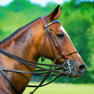 Profile of polo pony on playing field