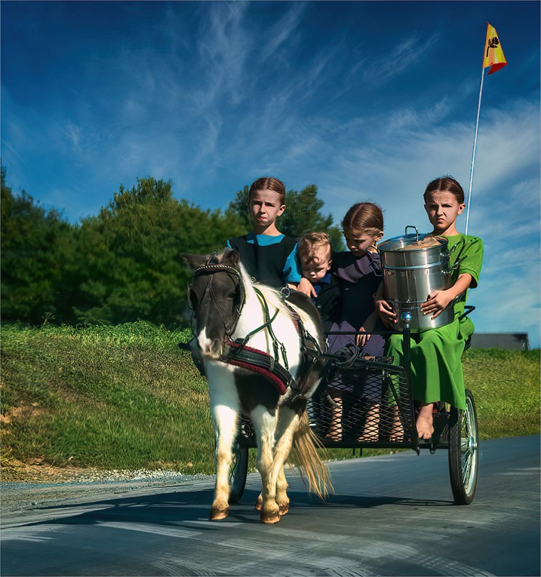 Four young Amish children riding in pony-drawn buggy