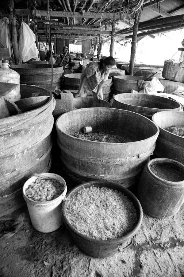 Gutwein Cambodia_-39WEB