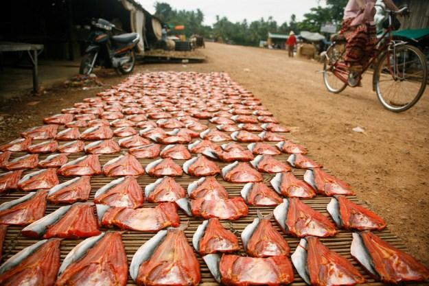Gutwein Cambodia_-7WEB