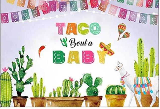 taco bout a baby banner