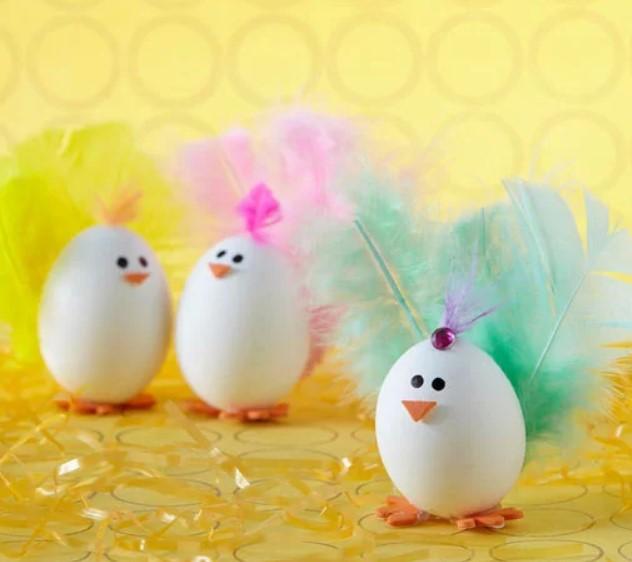 Feather Chicken Eggs