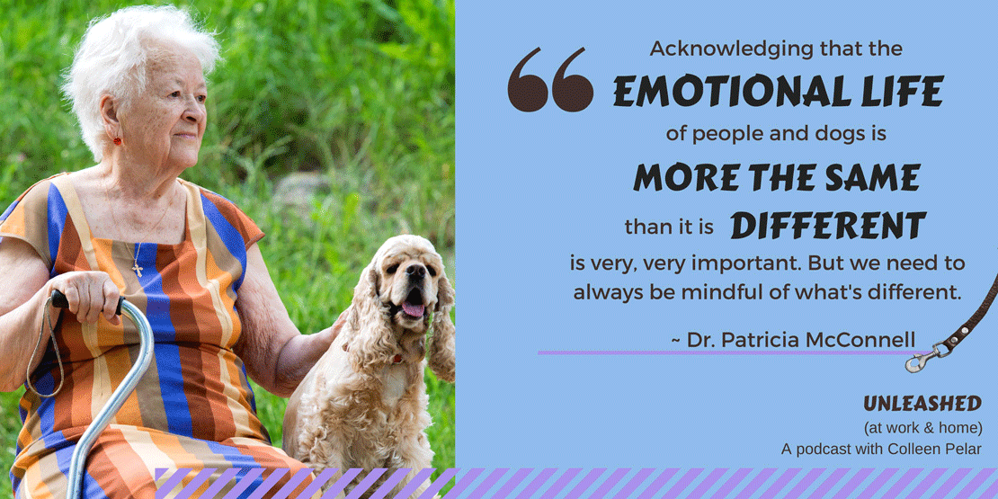 Dr. Patricia McConnell discusses emotions with Colleen Pelar on the UNLEASHED (at work & home) podcast. Learn how emotions help us and how they can trip us up. A fascinating look at the behavior of dogs and of people.