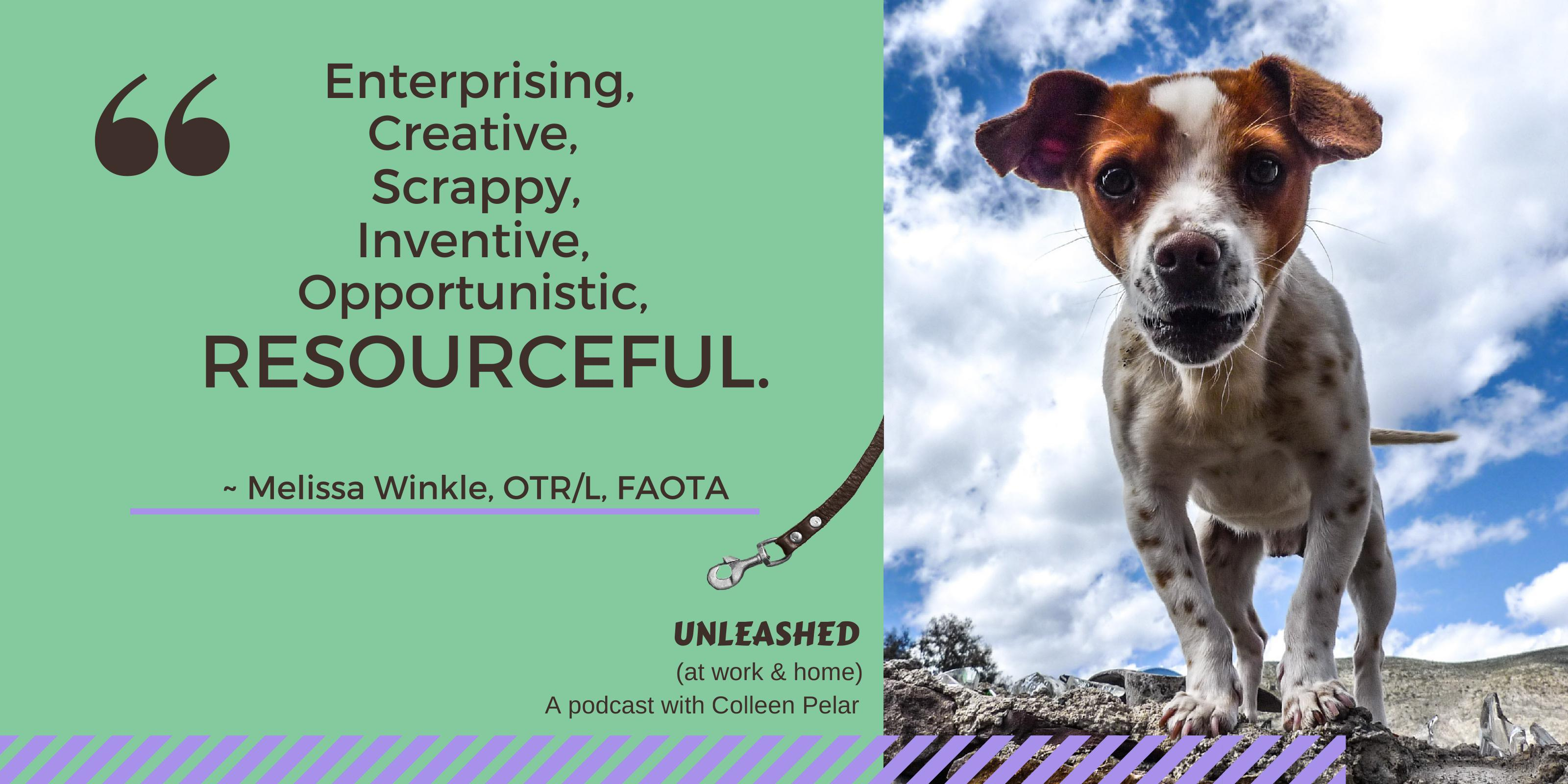 UNLEASHED (at work & home) podcast episode 9