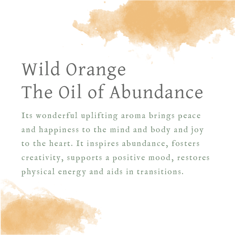 Oil of the Month - Wild Orange, The Oil of Abundance