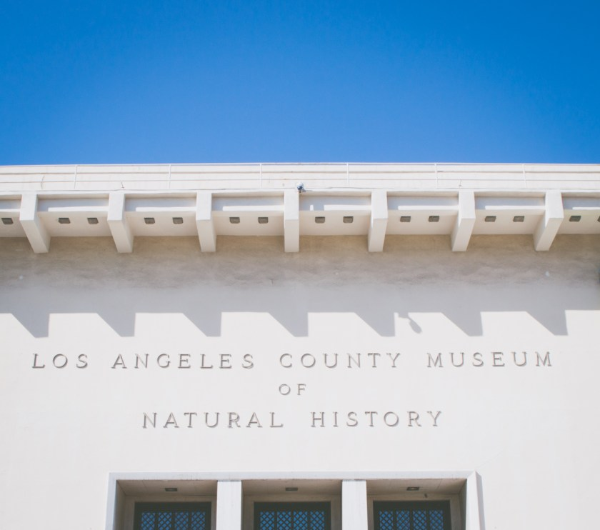 Los Angeles County Museum of Natural History | My Last Weekend in LA | ColleenWelsch.com