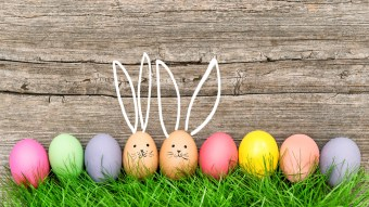 5 Fun Easter Egg Hunts for College Kids