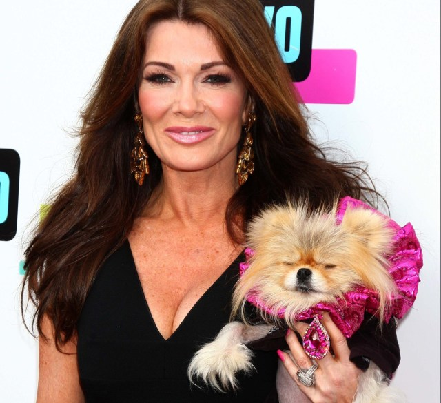 Ex-model Rachelle Garzia carries her pet dog Frank, a Brussels Griffon Shih Tzu mix, in a harness over her back as she walks through Manhattan. These over the shoulder puppy holders are known as 'pooch purses' and they are becoming a regular sight on the trendy thoroughfares of the The Big Apple. Featuring: Lisa Vanderpump, Giggy Where: No Hollywood, CA, United States When: 23 May 2013 Credit: Nikki Nelson/WENN.com