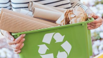5 Ways To Make Your Apartment More Eco Friendly