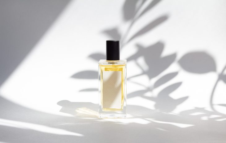 white and clear perfume bottle with black cap in the sunlight on white backdrop with plant shadow in view