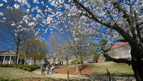 University of Mississippi  Photos  Best College  US News