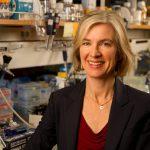 Breakthrough in Genetic Engineering