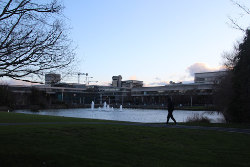 ucd main lake