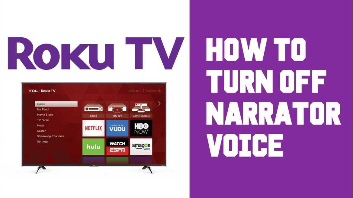 5 Easy Steps To Turn Off Roku Voice Assistant » Learn More