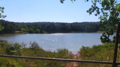 Lago Alberto Oasi Spondone