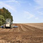 AGRICOLTURA: IN ARRIVO BANDI REGIONALI DA 20 MILIONI DI EURO