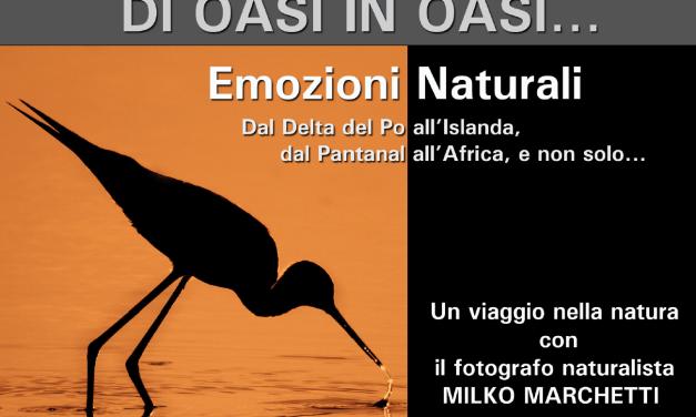 """""""DI OASI IN OASI… EMOZIONI NATURALI"""": UN VIAGGIO NELLA NATURA CON IL FOTOGRAFO MILKO MARCHETTI"""