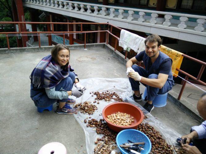 Wir wurden zwischen Ingwertee und Kaffee professionell angeleitet. Die Koreaner freuten sich sehr, dass wir bei dieser meditativen Aufgabe geholfen haben.