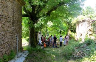 at picnic