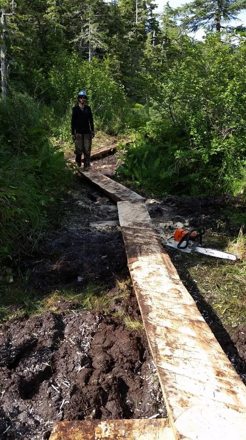 Eyak River Trail Split Log 1