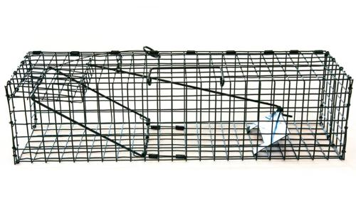 Live Catch Traps - Single Mink