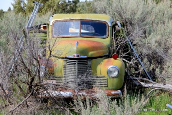 Sage encroaching on a deteriorating truck