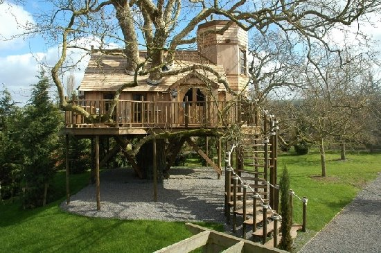 Cool Treehouses from around the World  Cool Things Collection  UK Lifestyle Blog
