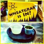 On Wheatgrass
