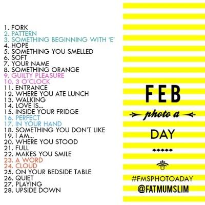 Feb2013FMSPhotoaDay