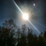 Day 24: Cloud.  No clouds in the sky at all on Feb. 25.  65 & Sunny.  Too bad every day before & since have been cloudy or rainy!