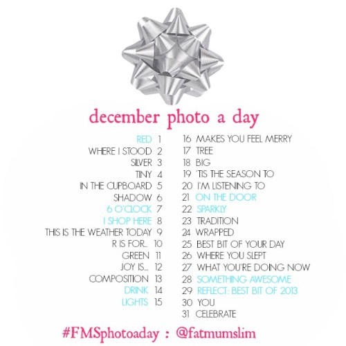 fatmumslim-december-2013-photo-a-day-list