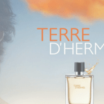 Terre d'Hermes by Hermes (2006)