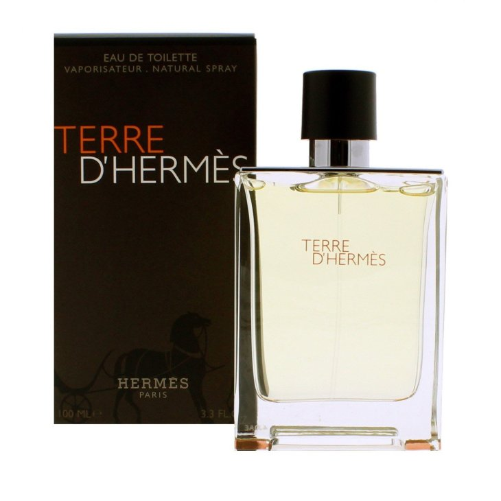 Best Mens Cologne Terre D'Hermes