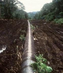 Aanslagen oliepijpleiding Caño Limón Coveñas loopt op tot negen dit jaar