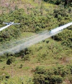 Colombia zet opnieuw glyfosaat in tegen cocavelden