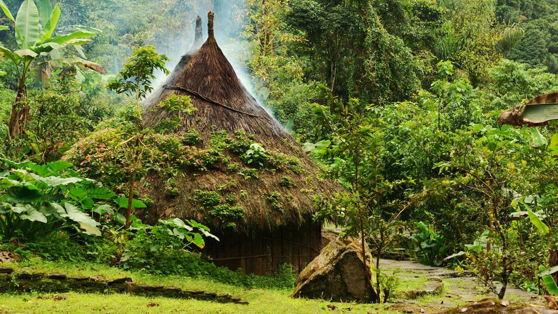 De Amazone in Colombia