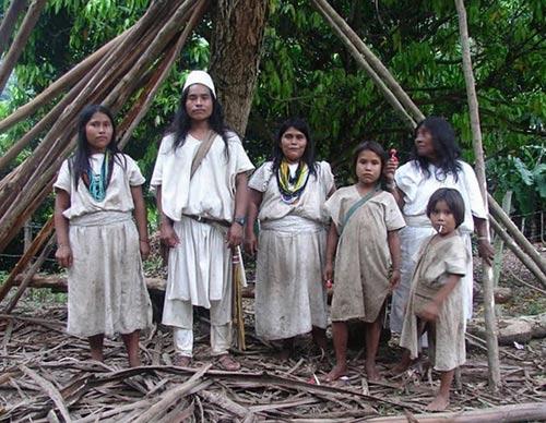 Индейцы из племени arhuacos