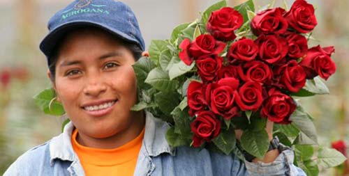 flowerworker-fairtrade