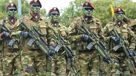 militares colombia venezuela frontera